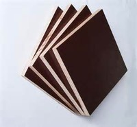 1220*2440*18mm film faced shuttering building construction materials/film faced plywood