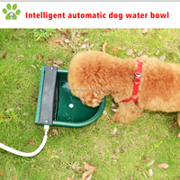 Automatic outdoor water fountain bowl, dog water fountain outdoor