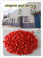 Polysaccharide10%-50% Wolfberry P.E ,Dried Goji Berry, Chinese wolfberry wholesale