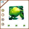 Green apple recycled pp cup mat, cutom printing plastic placemat