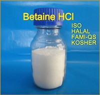 Betaine HCl USP Pharmaceutical intermediate