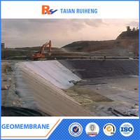High density polyethylene sheet/ HDPE geomembrane