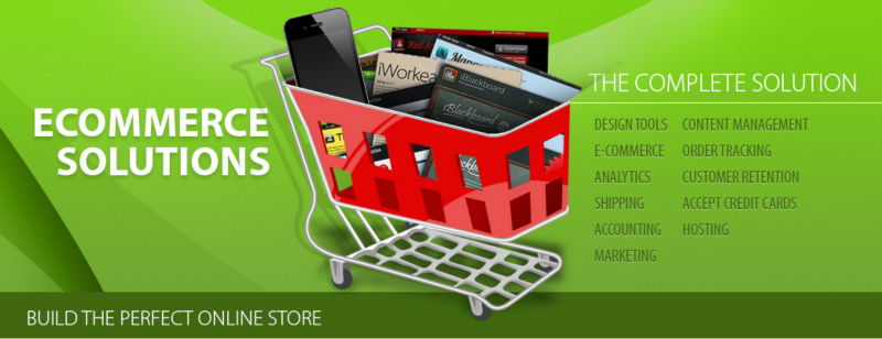 standard ecommerce website www.webpromotionindia.net