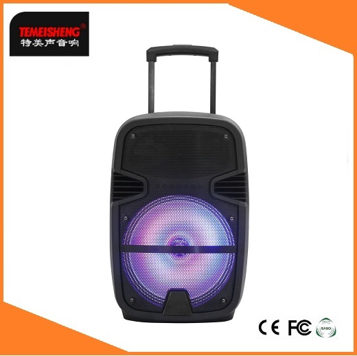 8INCH temeisheng karaoke standing speaker with remote control,bluetooth