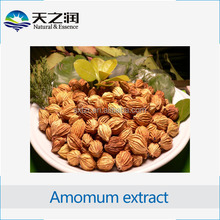 Free sample cardamom extract/ amomum cardamomum L. p.e. powder / 10:1 cardamom concentration