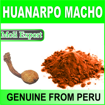 Genuine Huanarpo Macho Powder 100% Natural Male Stimulant from Peru (Jatropha Macranta) MOQ 5 kg