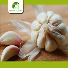farm pure whie garlic fresh red garlic class 1 with great price