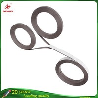 Manufacture Various Strong Permanent Magnetic Strips