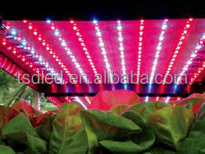CE Approved quality strip led 3528 smd led uv led strip