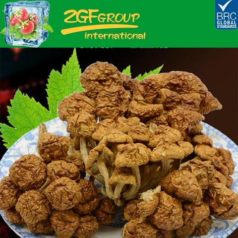 high quality dried wild health pholiota nameko mushroom in low price for sale