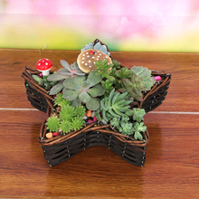 five-pointed star shaped handwoven willow basket for plants with plastic lining
