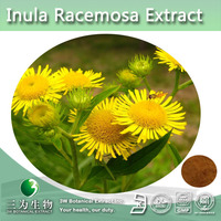 Natural Elecampane flower extract, Inula Racemosa by 3W Supplier