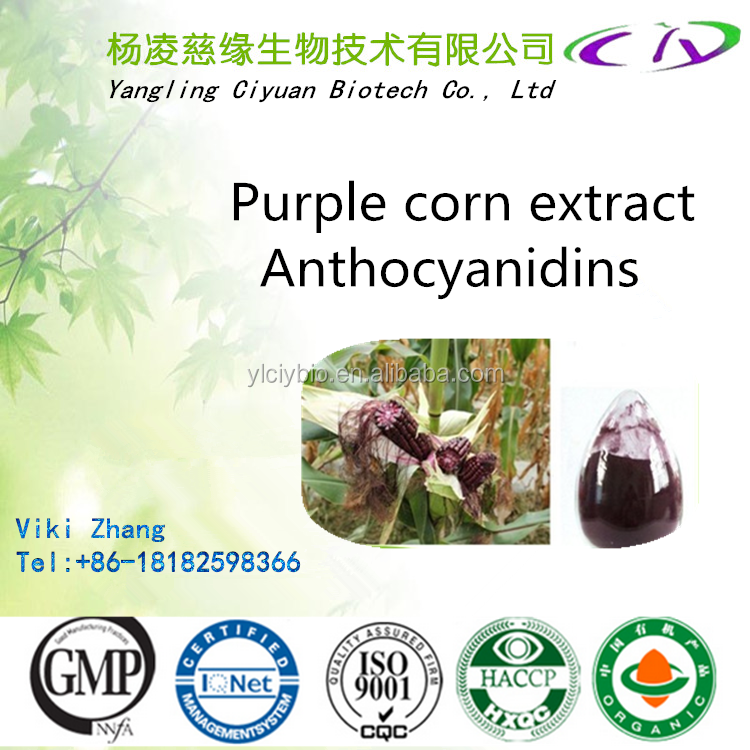 Purity Top sale Purple Corn Extract Anthocyanidins20% for Antioxidants benefit to eyes