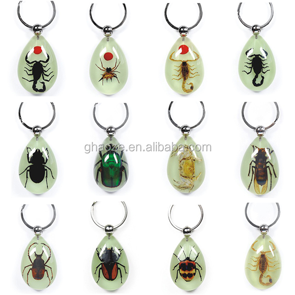 Particularly Novelty Gifts Real Insect Scorpion Keychain Factory