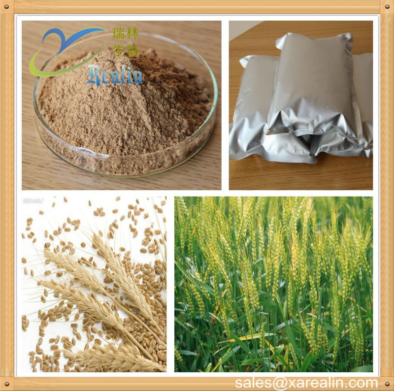 amylase activity in germinating barley Activity in germinating seeds of polygonum pensylvanicum and to determine the tissue of origin of the amylase activity and its responses to exogenous plant hormones.