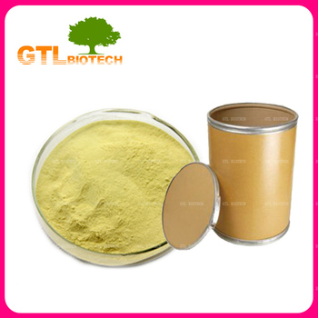 Sophora Japonica Extract Quercetin Powder Purity 98% Bulk with Low Price