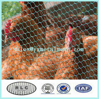 galvanized chicken coop wire netting/ chicken coop wire mesh for poultry cage or fence