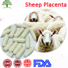 GMP High Quality Female Care Sheep Placenta Extracts Capsule Softgel