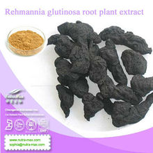 NutraMax Inc.- Rehmannia glutinosa root plant extract