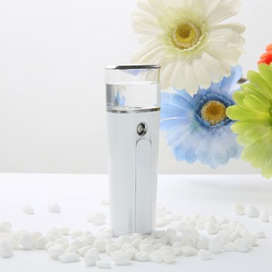 Best selling facial Steamer gift for skin care with 28ml water tank powerbank USB for phone ipad.