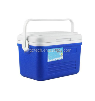 6L Insulated Portable Food Cooler Box
