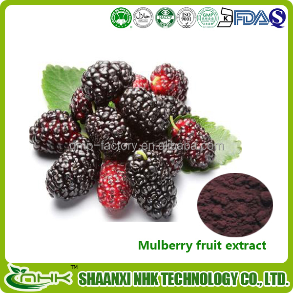 100% natural mulberry fruit extract Mulberry Extract powder anthocyanin/ OPC