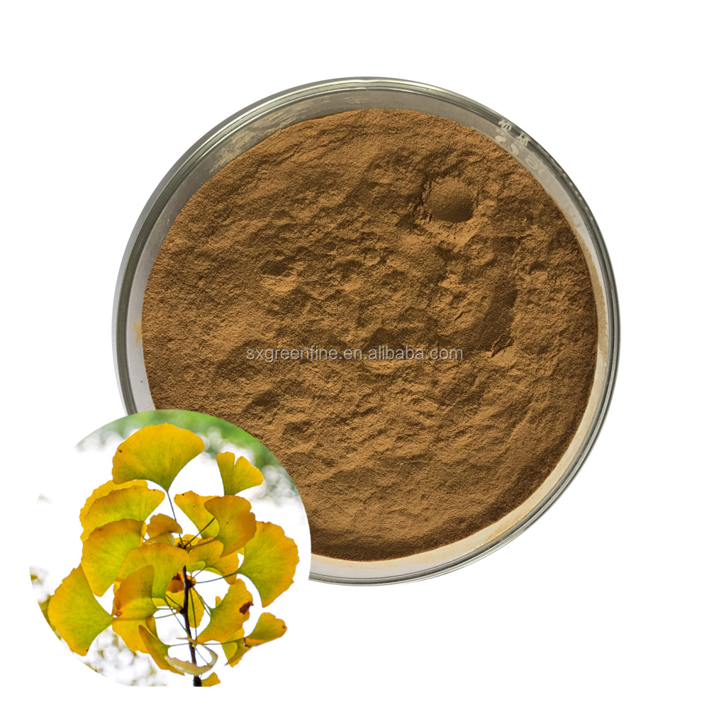 China Supplier Ginkgo Biloba Extract 24% Gingko Flavonoids/6% Total Terpene Lactones