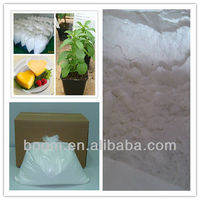 Stevia sugar in food additives