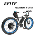 Wholesale Rear Motor cheap electric bike with EN15194 approved