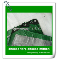 China Tarpaulin Factory Price Green Polyethylene Woven Tarpaulin Fabrics/PE Tarps/Canvas/Sheet /Roll for Covering