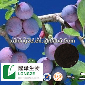 100% natural bilberry/blueberry/cranberry p.e 25% anthocyanidins