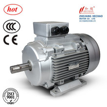 (CE,ISO9001)Quality Assurance Y2 Y MS AC Electric Three Phase Motor