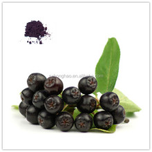 Honghao Top Quality 100% Pure Maqui Berry Extract