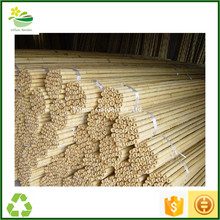 Natural Bamboo canes sticks stakes for Planters, Plant support
