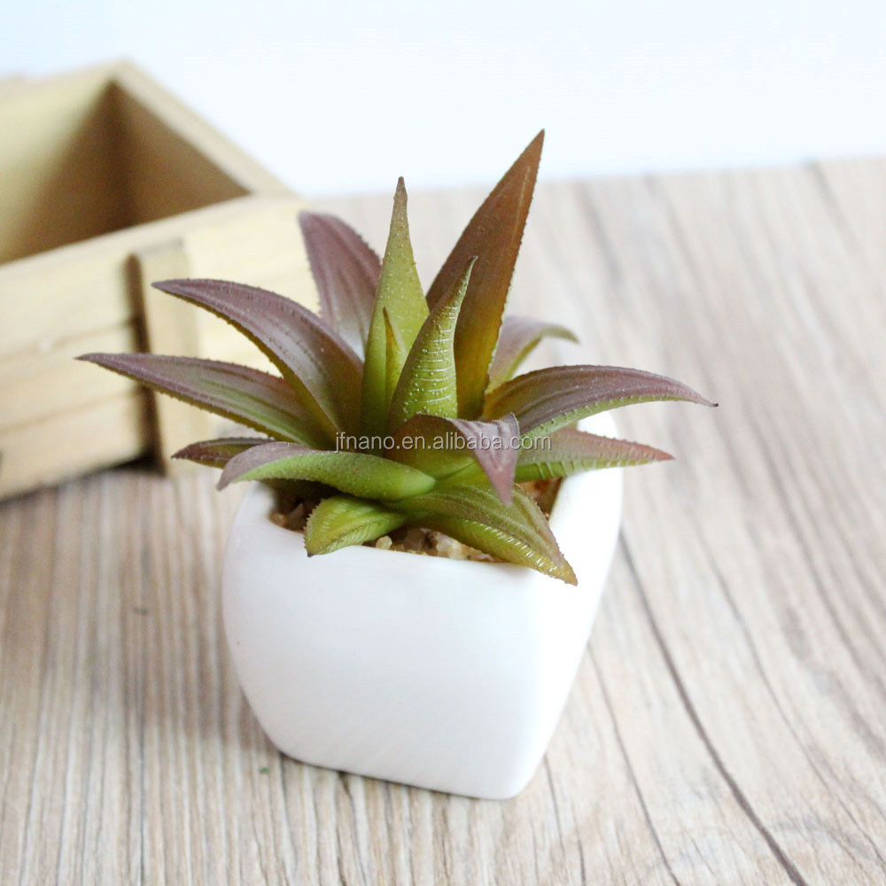Attractive home bonsai supplies mini plastic succulent artificial <strong>flowers</strong> with ceramic pot