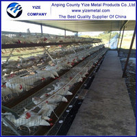 alibaba china market kenya chicken farm hot sale layer poultry battery cages / chicken cages for sudan farms