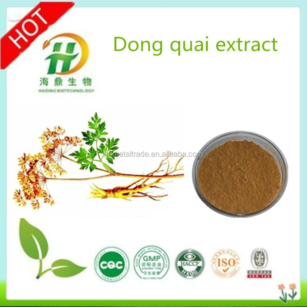 Dong Quai Root Extract/Dong Quai Root Extract Powder/Natural Dong Quai Root Extract