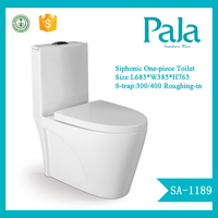 China sanitary wares toilet One Piece Toilet with cheap price