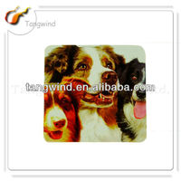 OEM factory Hot sale pet Dog family photo MDF coasters TWC0635