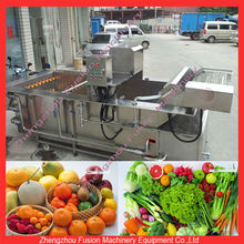vegetable washing equipment/fruits and vegetable processing equipment/fruit cleaning machine
