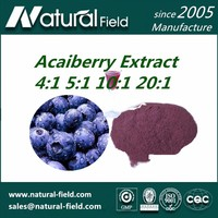 Water Soluble Acai Berry Extract 4:1 5:1 10:1 20:1
