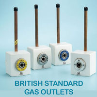 BRITISH STANDARD GAS OUTLET