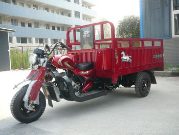 China newest 250cc cargo motor tricycle for sale