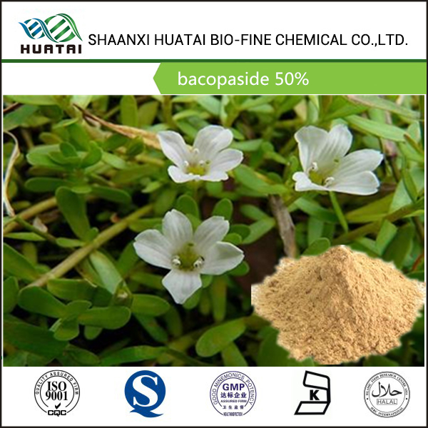 herbal medicine in china bacopa monnieri extract 50% bacoside A&B