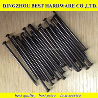 hot sale good quality black stainless steel concrete nail black concrete nail manufacture from China
