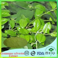 Lower blood fat gymnema sylvestre - gudmar suppliers with CE certificate