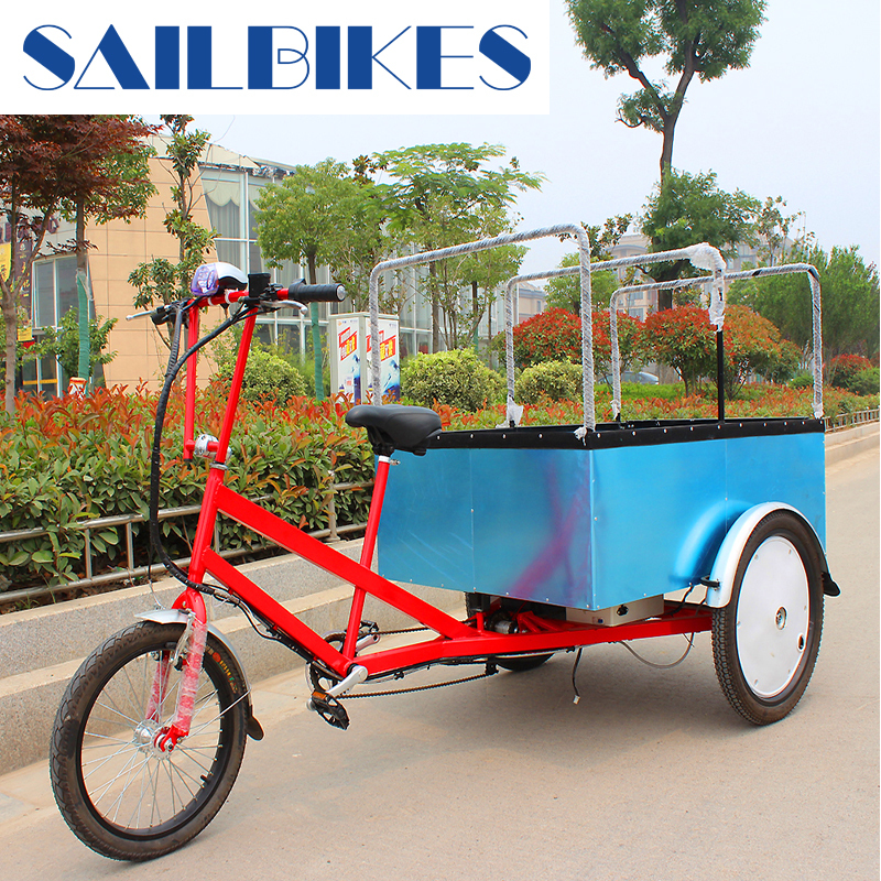 electric cargo trike with pedal for sale
