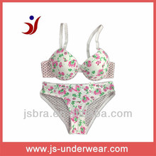 Hot Sexy ladies flower print bra lingerie set.Young ladies cute underwear,sexy bra panty your design