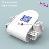 wholesale price l lipo laser DO-L07