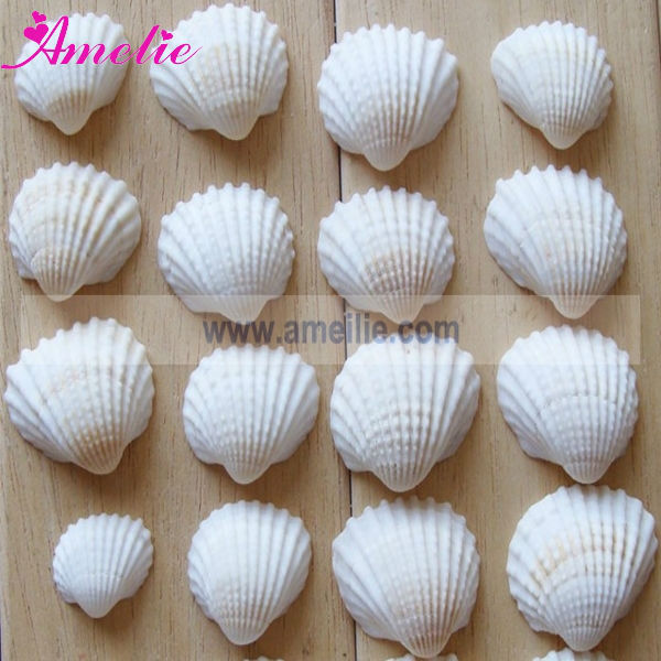 A0572 Beach Theme Seashell Wedding Decoration For Tables